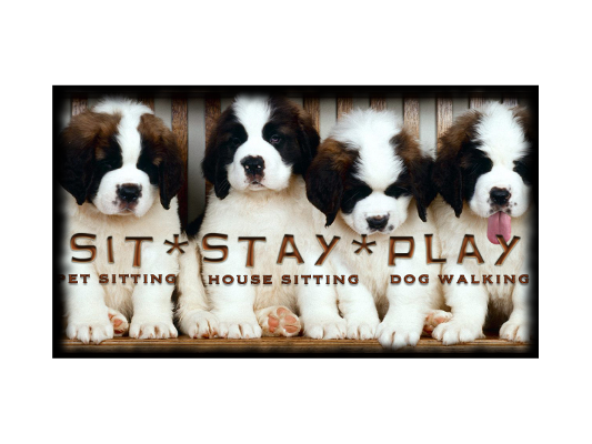 Sit-Stay-Play